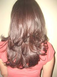 step cutting hair step cut hairstyle for straight hair back view http www
