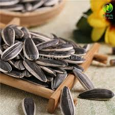 china export sunflower seeds 363 made in hetao plain china