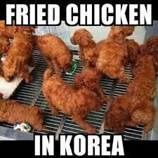 Chicken Meme Jokes - fried chicken in korea