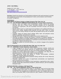 Cio Resume Samples by Free Resume Templates Job Accounts Manager Format Download
