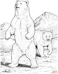 two black bears coloring page supercoloring com sprookje