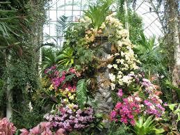 Volcanic Rock Garden Orchids White Flower Farm S