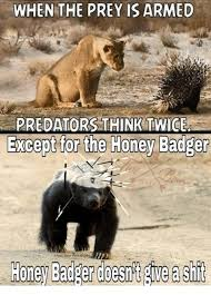 Honey Badger Meme - request honey badger do care honey badger meme on me me