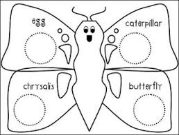 44 best life cycle of a butterfly images on pinterest a