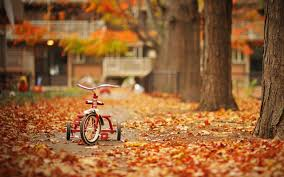 why fall is the best time to buy a home