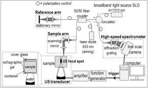 osa visualizing ultrasonically induced shear wave propagation