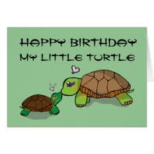 kawaii turtle greeting cards zazzle
