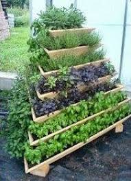 Herb Container Garden - 59 best container gardening images on pinterest landscaping