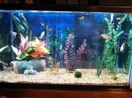 Asian Themed Fish Tank Decorations Aqua Culture 29 Gallon Aquarium Starter Kit With Led Walmart Com