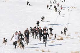 monteith s derby queenstown winter festival