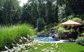 Pool Garden Ideas by Specimen Tree Nursery Bergen County Nj Large Rare Landscaping