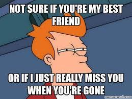 My Best Friend Meme - sure if you re my best friend