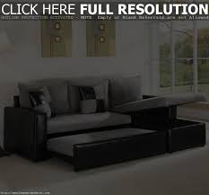 L Shaped Sectional Sleeper Sofa by Adorable Beige Feather Carpet Design White Flower On Vase