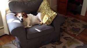 ikea slipcovered sofa sofa ikea loveseat cover ikea ektorp chair ektorp sofa review