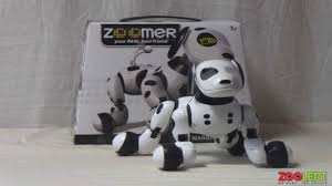 zoomer shadow zoomer robot dog hands on review zoolert youtube