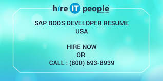 Sap Data Services Resume Sap Bods Developer Resume Hire It People We Get It Done