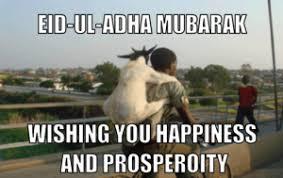 Eid Memes - eid ul adha memes forde lounge