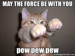May The Force Be With You Meme - 20 totally cool may the force be with you memes word porn quotes