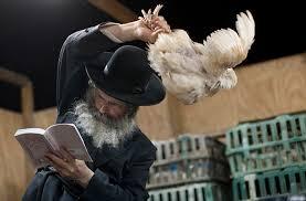 yom jippur animal rights sues for not stopping yom kippur