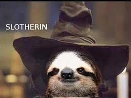 Best Sloth Memes - 15 hilarious sloth memes to brighten your day i can has cheezburger