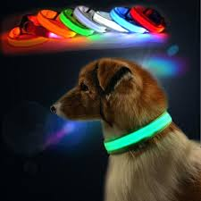 light up collar amazon light dog collars britishfood co