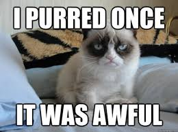 Good Grumpy Cat Meme - my 35 favorite grumpy cat memes