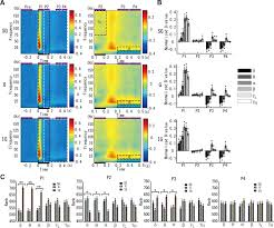 Time Difference Map Large Scale Heterogeneous Representation Of Sound Attributes In