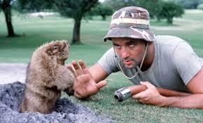 Bill Murray Memes - still alright 35 years of caddyshack biography