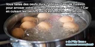 comment cuisiner les oeufs que faire avec l eau de cuisson des oeufs découvrez l astuce