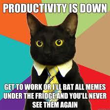 Bat Meme - productivity is down get cat meme cat planet cat planet