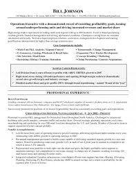 How To Write A Resume For Hospitality Jobs by Chief Operating Officer Resume