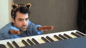 Keyboard Cat Meme - ron livingston as keyboard cat album on imgur