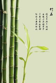 china bamboo decorative material china bamboo decorative material get quotations 181 poster panels material fresh flowers painted wall mural paintings decorative painting bamboo 650 ps poster