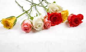 3 quick home flower arrangements u2013 surely simple