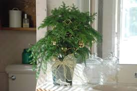 Ways To Decorate A Small Bathroom - christmas decorating ideas 3 ways to decorate mini trees
