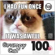 Grumpy Cat Meme I Had Fun Once - last bing queries pictures for grumpy cat meme i had fun once