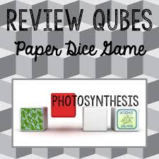 Lab Bench Photosynthesis 100 Best Biology Photosynthesis And Respiration Images On
