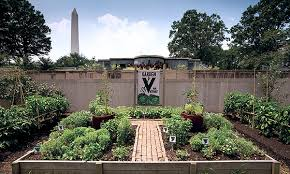 Botanical Garden Internship Smithsonian Gardens Internship Smithsonian Fellowships And