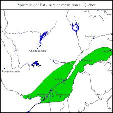 l est mffp espèces fauniques menacées ou vulnérables au québec