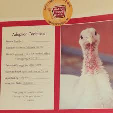 adopt a family for thanksgiving native foods blog farm sanctuary adopt a turkey a new