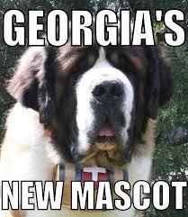 Texas Tech Memes - unique texas tech memes georgia tech football memes kayak wallpaper