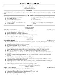 Sample Summary Of Resume Anti Againts Antithesis Qualified Maintenance Engineer Candidate