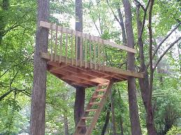 elevated living u0027s hooked up eco friendly tree houses tree houses