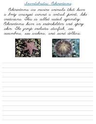 fran u0027s freebies invertebrates cursive u2013 home education resources