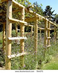 Vertical Garden Trellis - stylish garden trellises for your garden