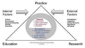 jhn evidence based practice series 2013 edition ijhn learning