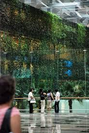 homelife 10 best plants for vertical gardens 270 best growing up images on pinterest vertical gardens