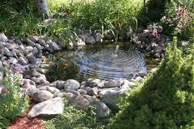 small garden pond pictures gardening flowers 101 gardening