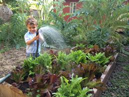 Fall Vegetables Garden by What To Plant This Fall Diy Network Blog Made Remade Diy