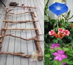 build branch trellis for climbing vines plants project
